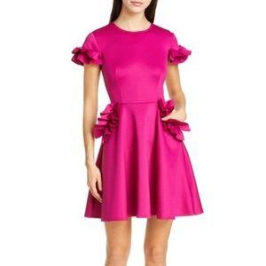 Ted Baker London Luuciee Ruffle Skater Dress Pink